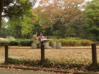 Un jardin à Tokyo