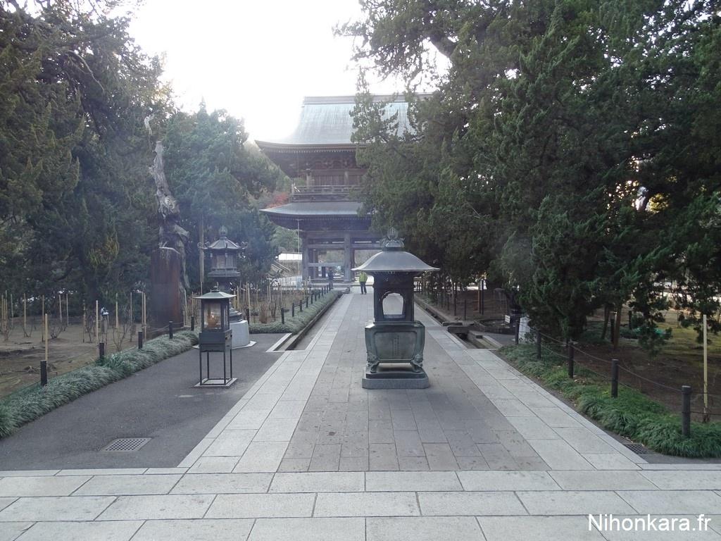 Temple hasedera