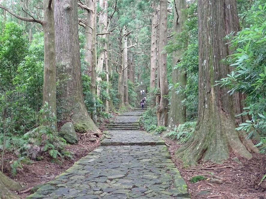 chemins-du-kumano-kodo