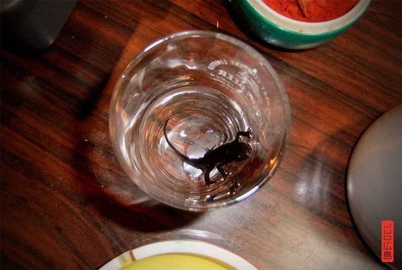 Repas de lézards au Japon