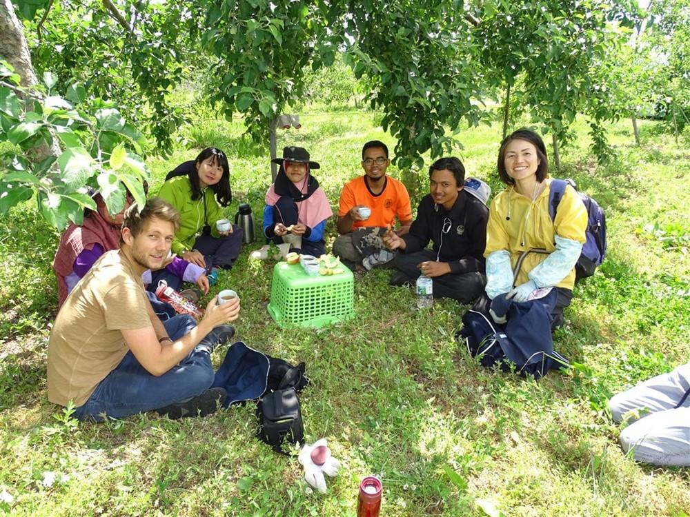 pause-thé-dans-les-alpes-japonaises