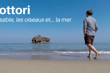 Tottori, le sable, les oiseaux et la mer