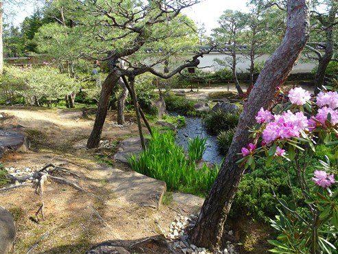 Le jardin Koko en