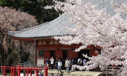 Kyoto au Japon