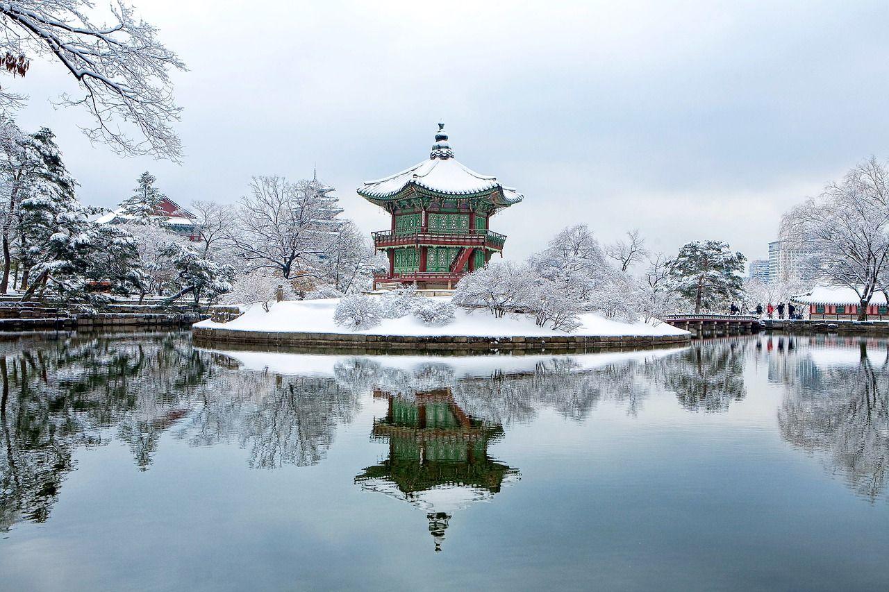 Guide français à Séoul | Découvrez la ville autrement