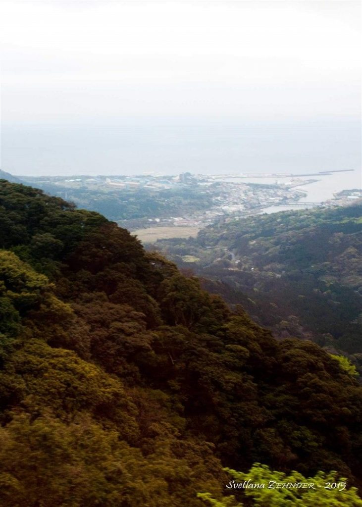 miyanoura-shiratani