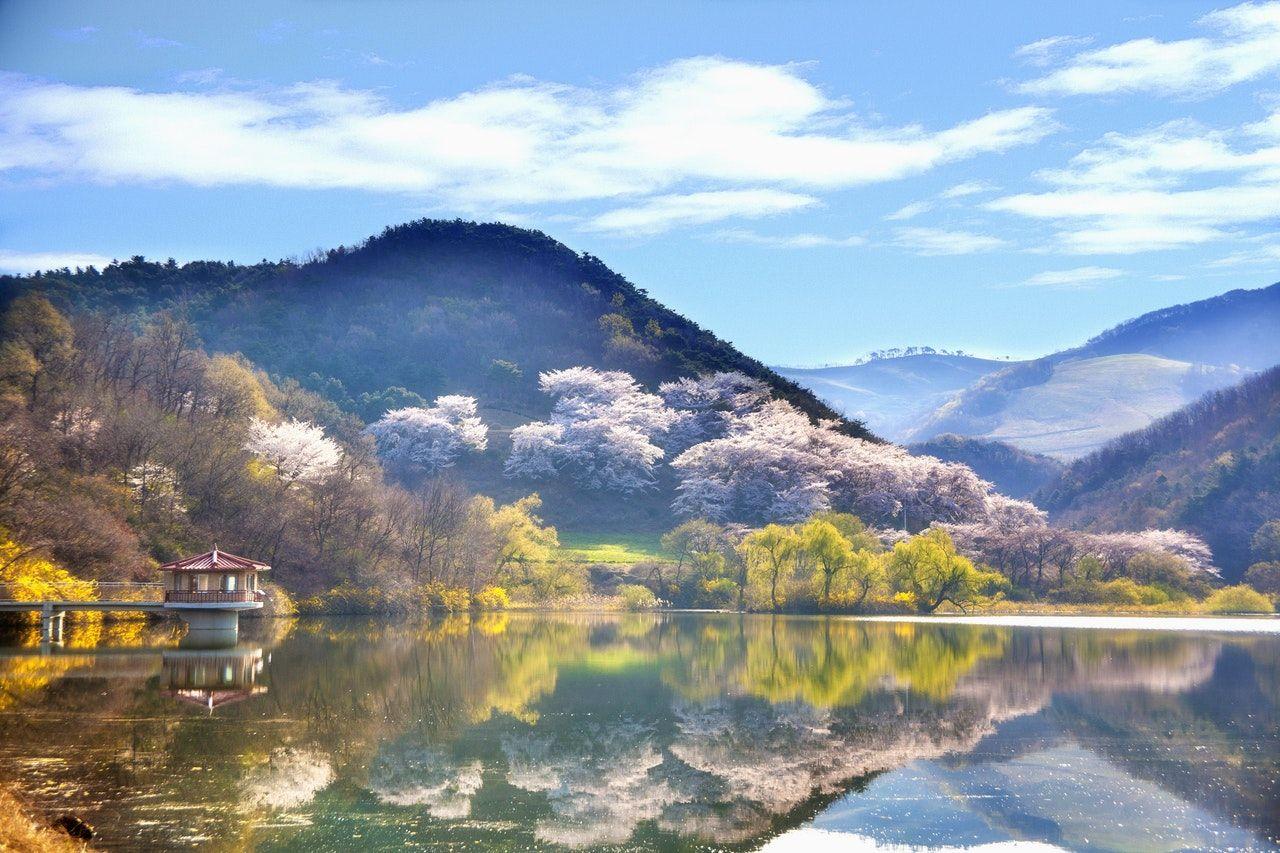 Préparer son voyage en Corée du Sud