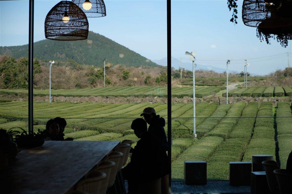 Café et thé à Jeju