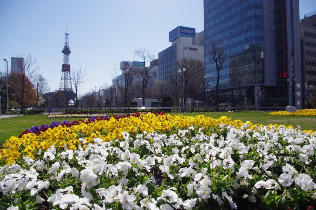 Visiter Sapporo